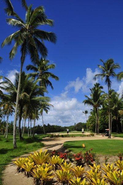 Der Comandatuba Ocean Golfplatz mit Palmen und vielen Waste Areas